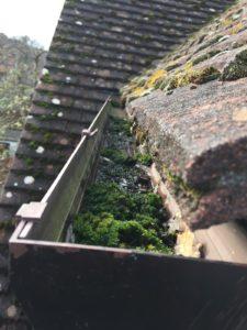 House gutters full of moss