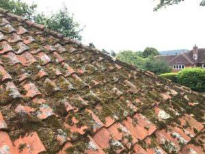 moss covered roof tiles